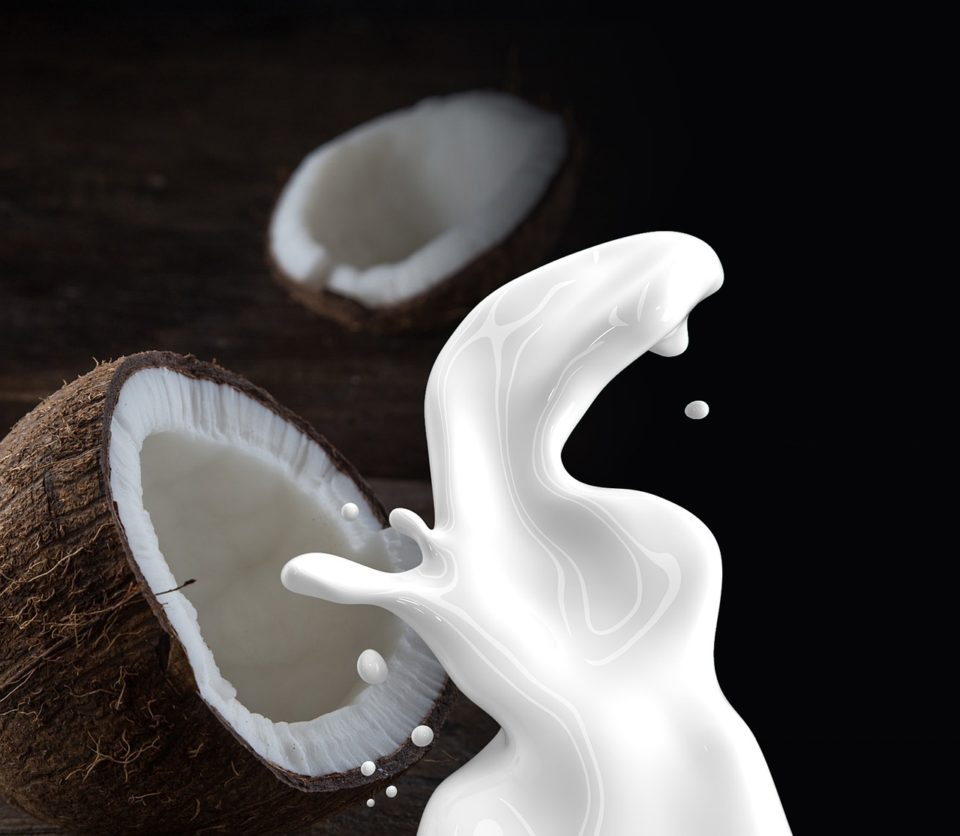 coconut milk 1623611 1280